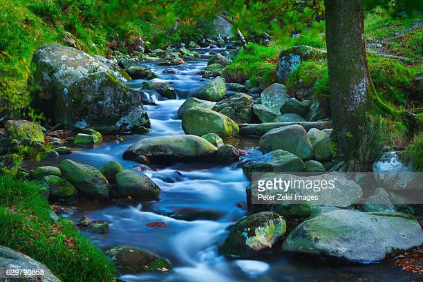 Rocky stream in Glendalough, County Wicklow, Ireland