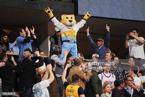Rocky the Mountain Lion mascot of the Denver Nuggets celebrates with fans during a game between the San Antonio Spurs and Nuggets on April 10 2013 at...