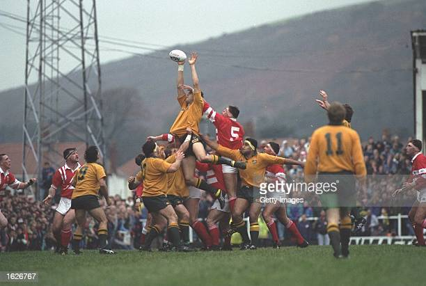 Rod McCall of Australia jumps high to win the line-out for Australia in the Llanelli v Australia match during the 1992 Australian tour of the British...