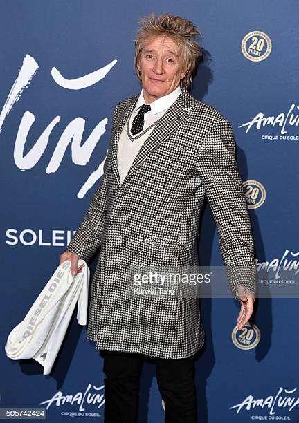 Rod Stewart attends the Red Carpet arrivals for Cirque Du Soleil Amaluna at Royal Albert Hall on January 19 2016 in London England