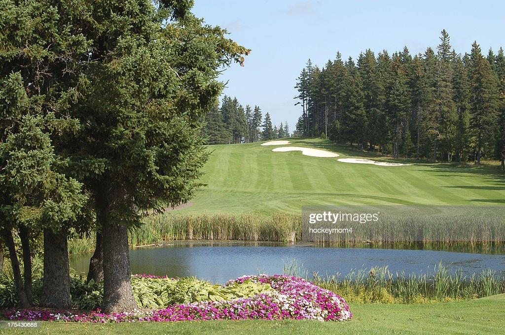 Rodd River Golf : Stock Photo