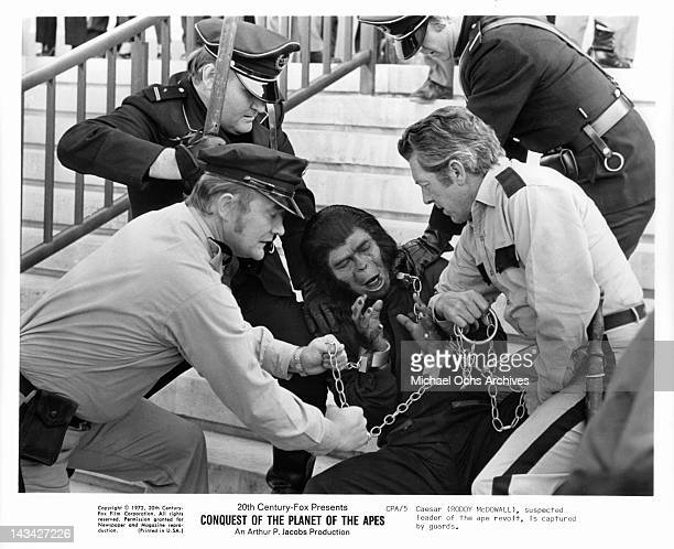 Roddy McDowall suspected leader of the ape revolt is captured by guards in a scene from the film 'Conquest Of The Planet Of The Apes' 1972