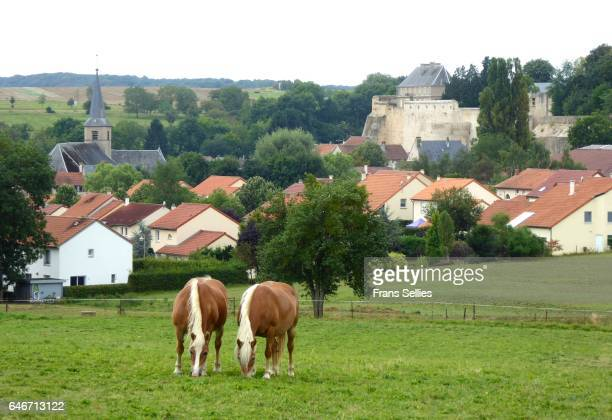 rodemack, lorraine, france - frans sellies stockfoto's en -beelden