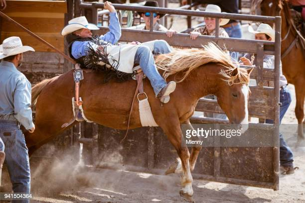 Rodeo Action Gate Open Bucking Bronco Cowboy Riding in Arena