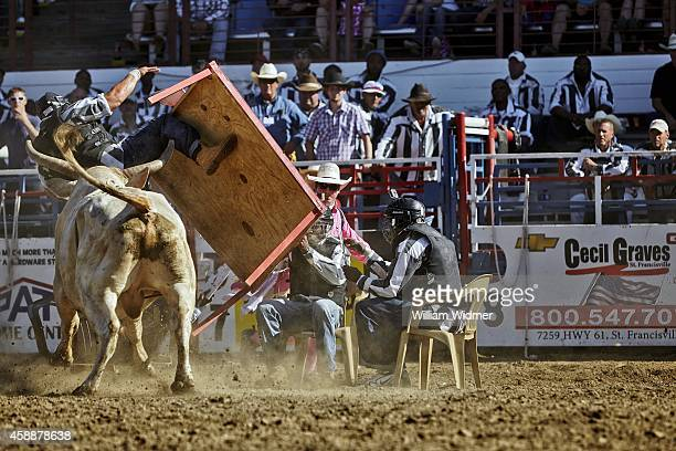 Angola Prison Rodeo View of inmates running from bull during Convict Poker at Louisiana State Penitentiary The object of the event is to be the last...