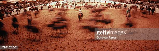 Rodeo arena,blurred motion,Texas, USA