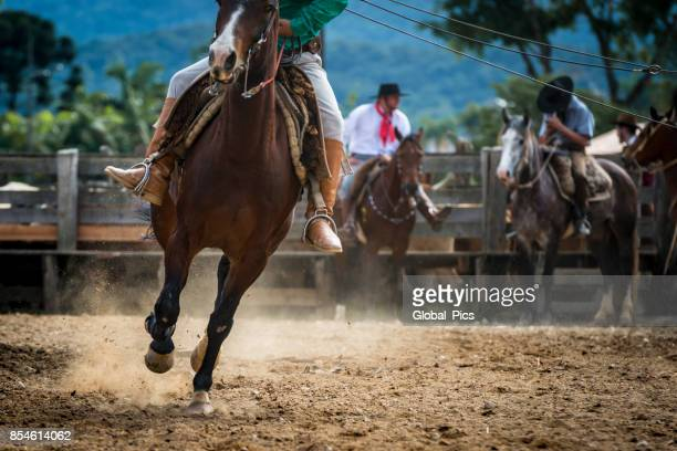 Rodeo - Brazil (Rodeio Crioulo)