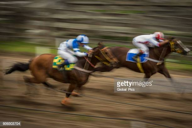 rodeo - brazil (rodeio crioulo) - racehorse stock pictures, royalty-free photos & images