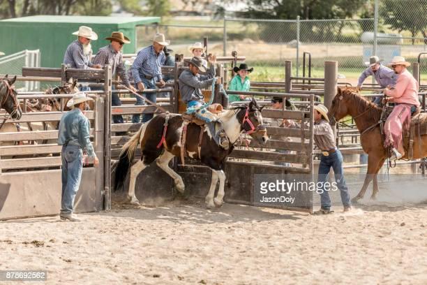 Rodeo Bucking Bronco Bareback riding
