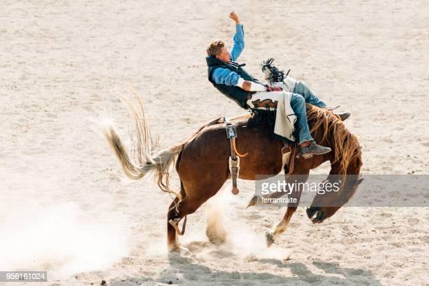 competição de rodeio - estadio de los cowboys - fotografias e filmes do acervo