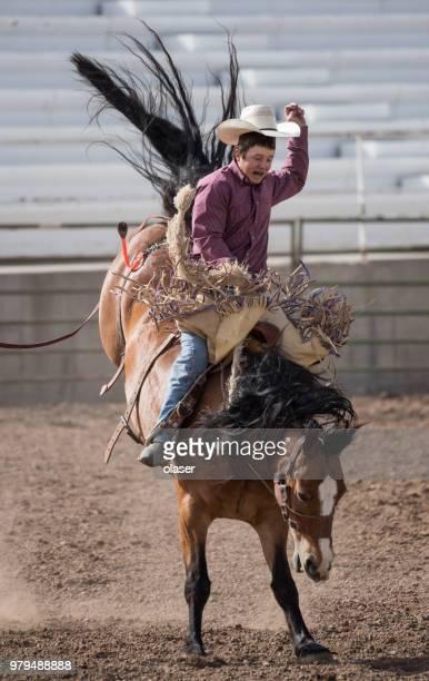 ロデオ カウボーイと野生の馬 - anti gravity ストックフォトと画像