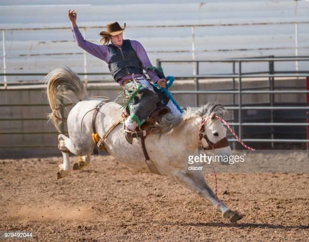 cowboy de rodeio e cavalo selvagem - estadio de los cowboys - fotografias e filmes do acervo