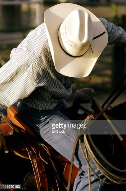 Rodeo Cowboy Calf Roper on Saddled Horse Ready To Ride