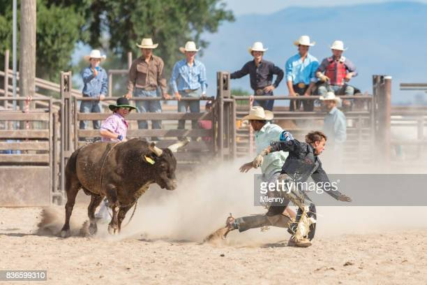 Rodeo Event Bull Chasing Cowboy USA