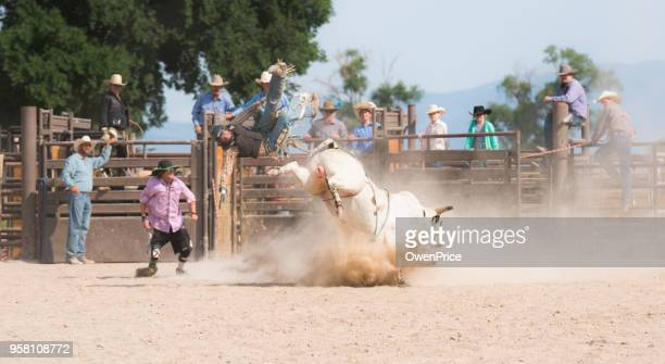 Rodeo event bull riding