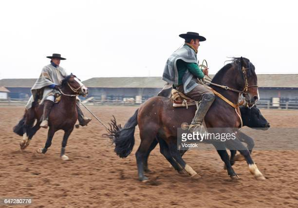 rodeo on the chilean winery - poncho stock pictures, royalty-free photos & images