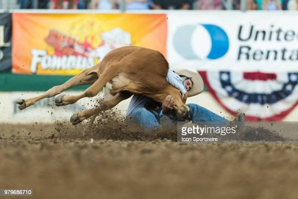 Rodeo participate during the Steer Wrestling event at the Reno Rodeo on Tuesday June 19 2018 at the Reno Livestock Events Center in Reno Nev