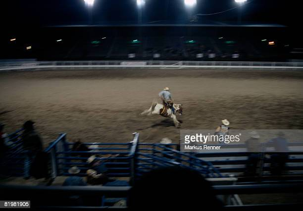rodeo rider performing at a rodeo, Cody, Wyoming, USA