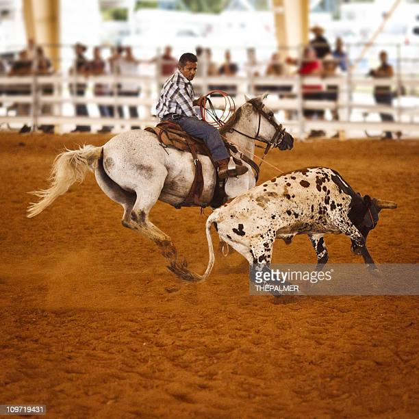Rodeo Team roping