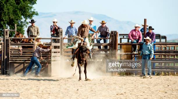Rodeo Team Watching Team Mate Break Out of The Shoot For An Eight Second Saddle Bronc Ride