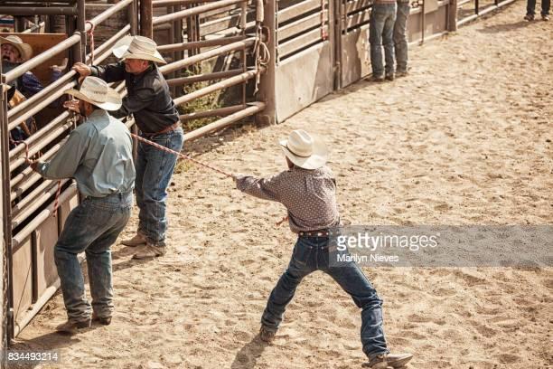 ロデオ チームワーク - 家畜柵 ストックフォトと画像