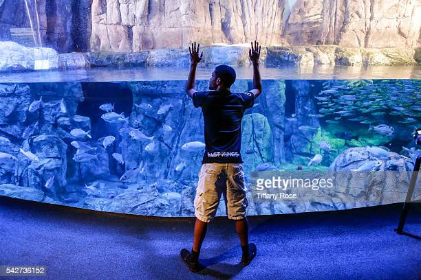 Rodney Peete Jr attends the HollyRod Foundation's My Brother Charlie goes to the Aquarium Presented by Toys'R'Us at the Aquarium of the Pacific on...