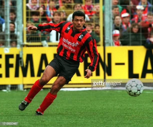 Rodolfo Esteban Cardoso ist mit dem SC Freiburg zwei Spieltage vor Saisonschluß klar auf UEFA-Cup-Kurs. Und der 26jährige Argentinier hat mit seinen...