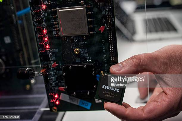Rodrigo Alverez system engineer for International Business Machines Corp displays a new SyNAPSE chip during testing at the IBM Almaden Research...