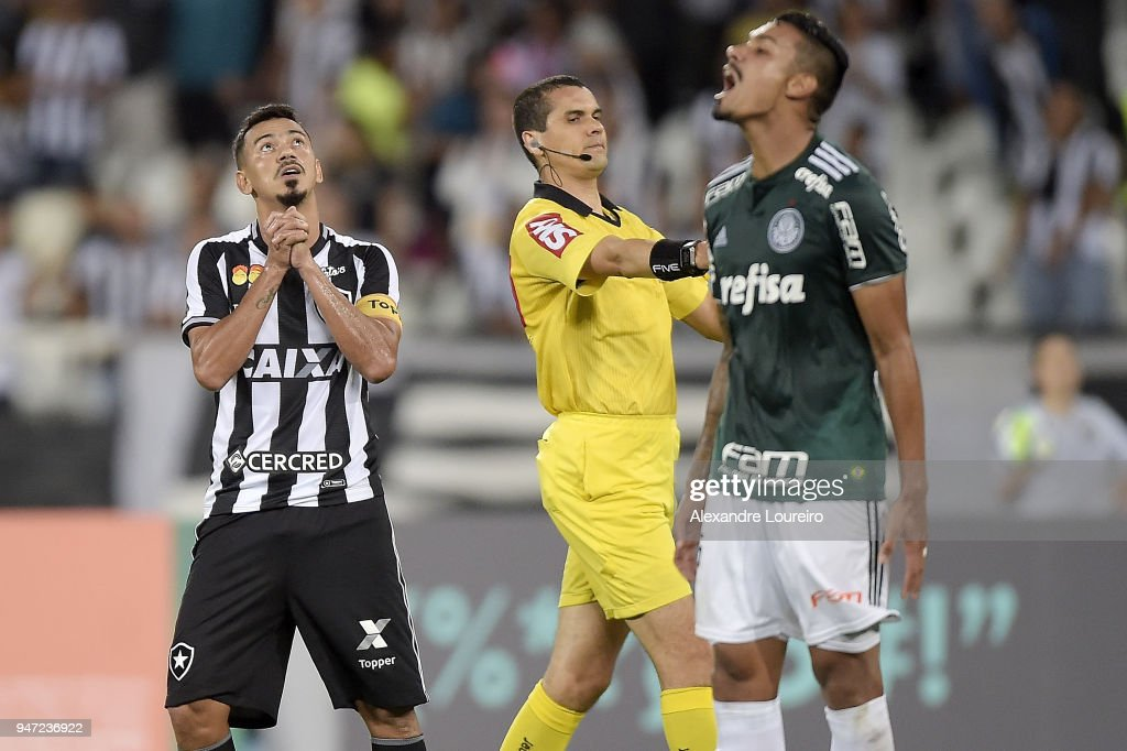 Rodrigo Lindoso (L) of Botafogo reacts during the match between Botafogo and Palmeiras as part of Brasileirao Series A 2018 at Engenhao Stadium on April 16, 2018 in Rio de Janeiro, Brazil.