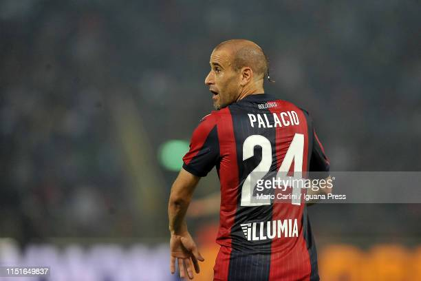 Rodrigo Palacio of Bologna FC looks on during the Serie A match between Bologna FC and SSC Napoli at Stadio Renato Dall'Ara on May 25 2019 in Bologna...