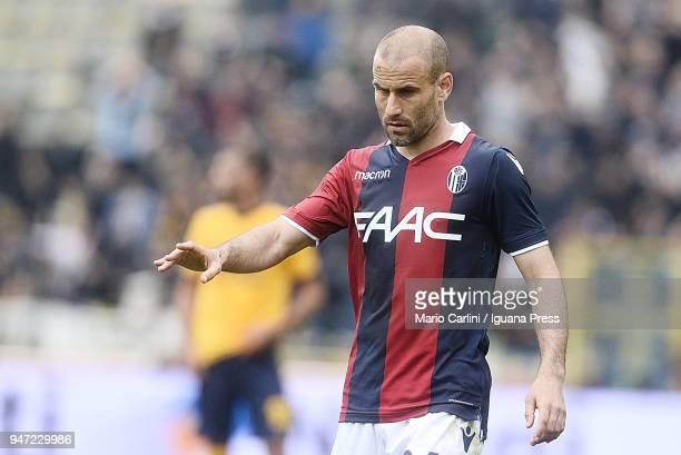 Rodrigo Palacio of Bologna FC looks on during the serie A match between Bologna FC and Hellas Verona FC at Stadio Renato Dall'Ara on April 15 2018 in...
