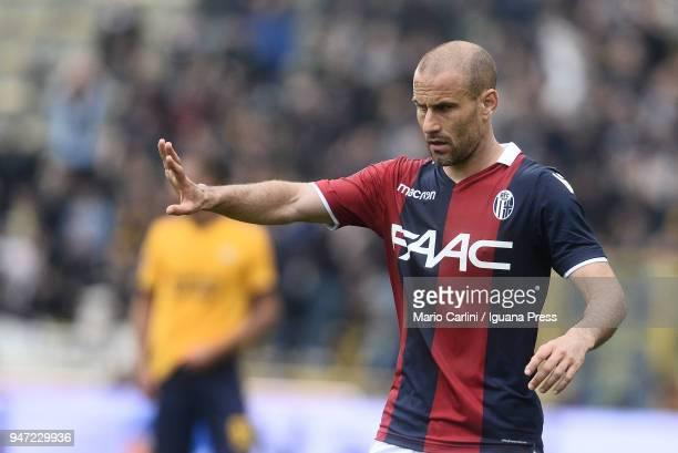 Rodrigo Palacio of Bologna FC reacts during the serie A match between Bologna FC and Hellas Verona FC at Stadio Renato Dall'Ara on April 15 2018 in...