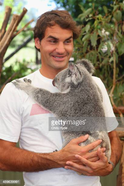 Roger Federer of Switzerland holds a koala at Lone Pine Koala Sanctuary during day one of the 2014 Brisbane International at Queensland Tennis Centre...