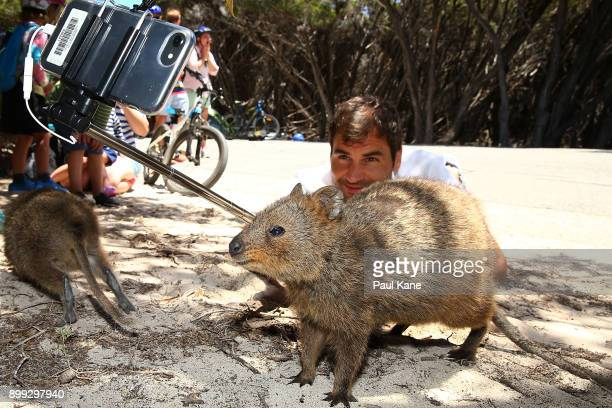 Roger Federer of Switzerland takes a selfie with a Quokka at Rottnest Island ahead of the 2018 Hopman Cup on December 28 2017 in Perth Australia