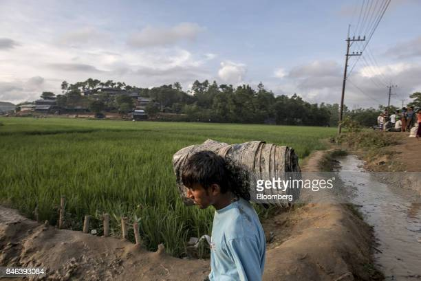 A Rohingya man carries a rolled up tarp past rice paddies near a newly setup refugee camp at Balukhali in Cox's Bazar Bangladesh on Tuesday Sept 12...