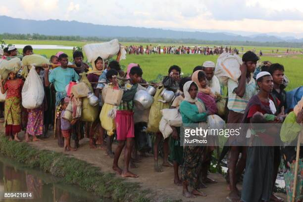 Rohingya Muslims, fled from ongoing military operations in Myanmars Rakhine state make their way through muddy water after crossing the...