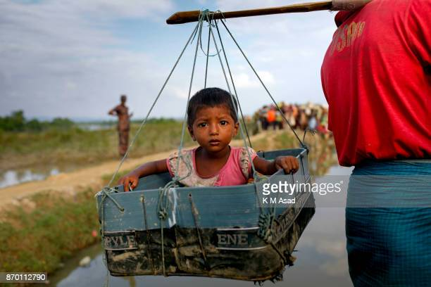 Rohingya refugee father carry his son in a basket walk through paddy field entered Bangladesh from Myanmar Rakhine state at Anjumanpara in Coxsbazar...