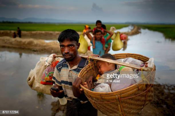 Rohingya refugee father carry his son in a busket walk through paddy field entered Bangladesh from Myanmar Rakhine state at Anjumanpara in Coxsbazar...