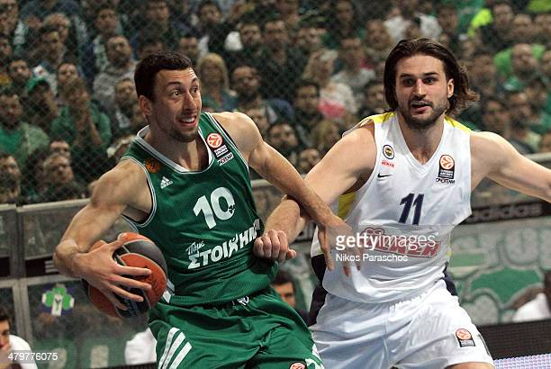 Roko Ukic #10 of Panathinaikos Athens competes with Linas Kleiza #11 of Fenerbahce Ulker Istanbul during the 20132014 Turkish Airlines Euroleague Top...