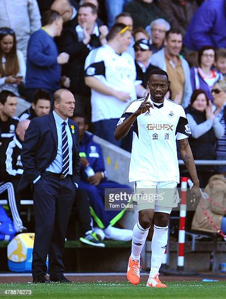 Roland Lamah of Swansea City celebrates his goal during the Barclays Premier League match between Swansea City and West Bromwich Albion at Liberty...