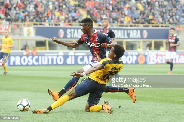 Rolando Aarons of Hellas Verona FC competes the ball with Ibtahima Mbaye of Bologna FC during the serie A match between Bologna FC and Hellas Verona...
