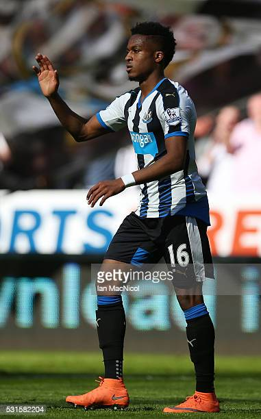 Rolando Aarons of Newcastle United celebrates scoring his team's fourth goal during the Barclays Premier League match between Newcastle United and...