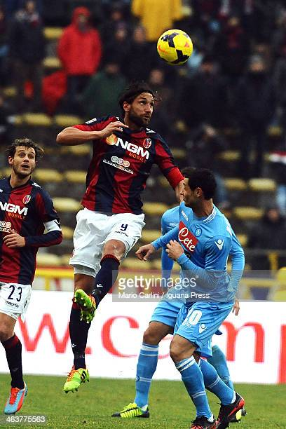 Rolando Bianchi of Bologna FC in action during the Serie A Bologna FC and SSC Napoli at Stadio Renato Dall'Ara on January 19 2014 in Bologna Italy