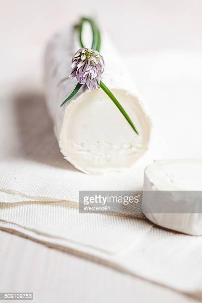 Roll of goat's cheese camembert with blooming chive, Allium schoenoprasum