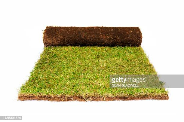 roll of grass turf - rolle stock-fotos und bilder