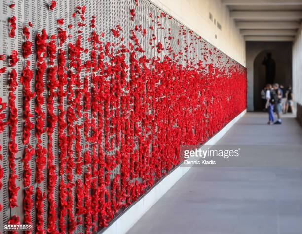 Roll of Honour wall dotted with red poppies