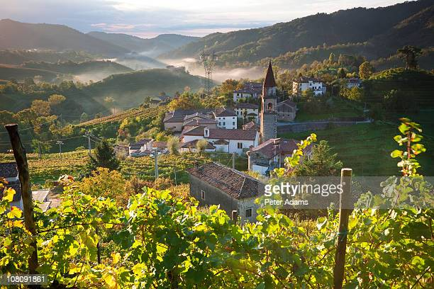 rolle village & prosecco vineyards, veneto, italy - veneto stock pictures, royalty-free photos & images