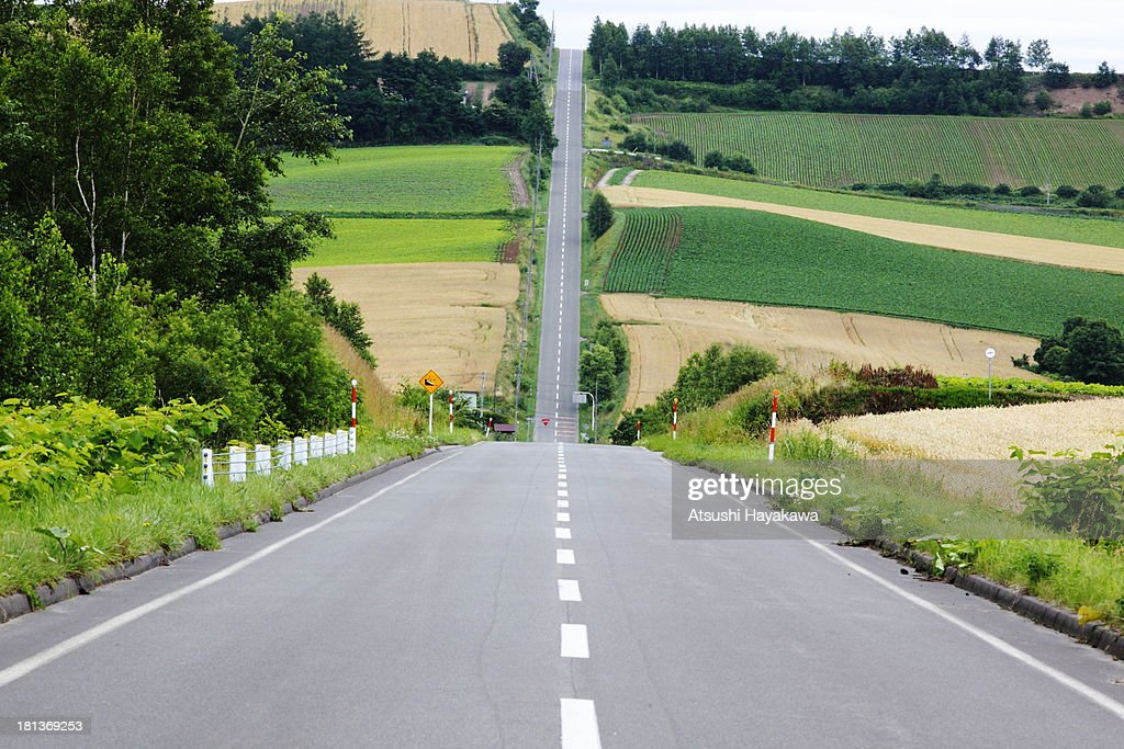 Roller coaster road : Stock Photo