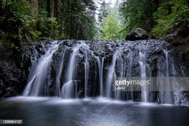rolley lake provincial park, mission, bc, canada - vancouver canada stock pictures, royalty-free photos & images