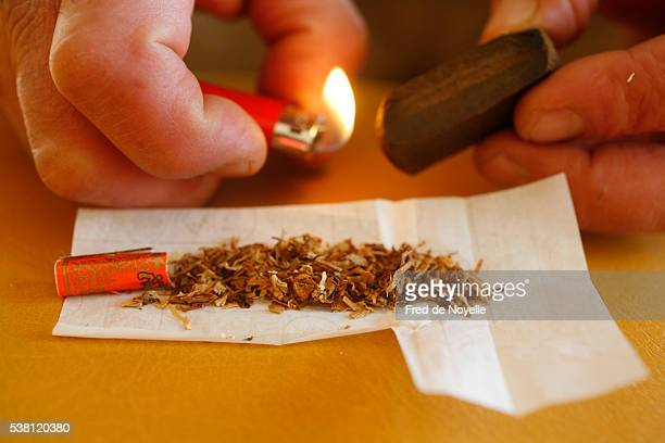 rolling a hashish joint - hashish stock pictures, royalty-free photos & images